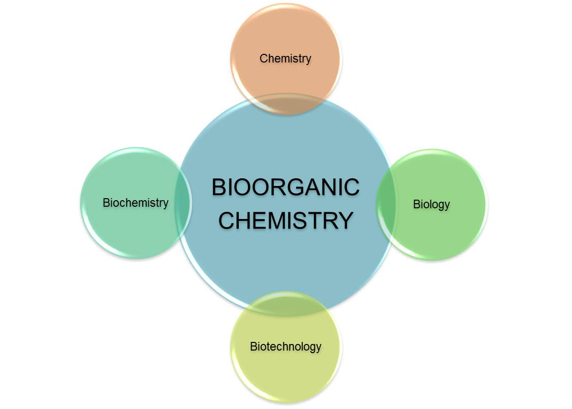 undergraduate thesis biochemistry Undergraduate students interested in subject areas within molecular biology and genetics can major in the biological sciences, which serves students from both the college of agriculture and life sciences.
