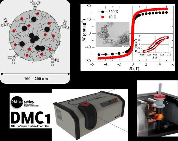 Multifunctional magnetic materials | biomat