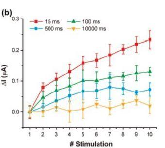 5) Practical guide-memristor   neuroxide